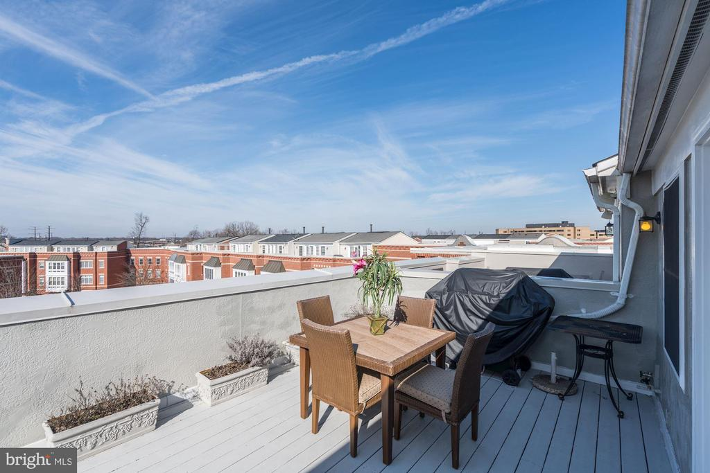 Gorgeous Views from Rooftop Terrace - 12086 KINSLEY PL, RESTON