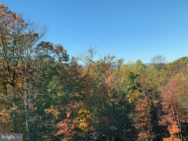 View from rear deck - 9689 AMELIA CT, NEW MARKET