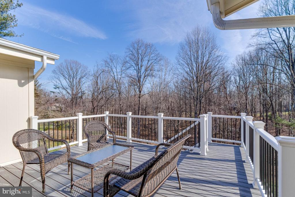 Beautiful Trex Decking - 10907 WATERMILL CT, OAKTON