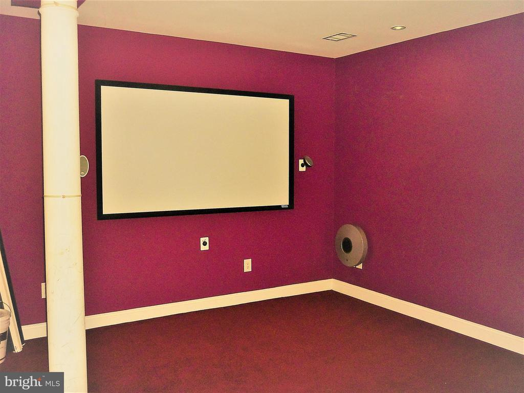 Home Theatre - 18749 UPPER MEADOW DR, LEESBURG