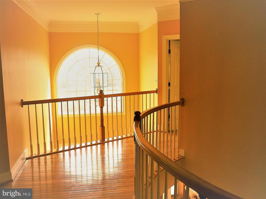 Sun Drenched Upper Level Foyer - 18749 UPPER MEADOW DR, LEESBURG