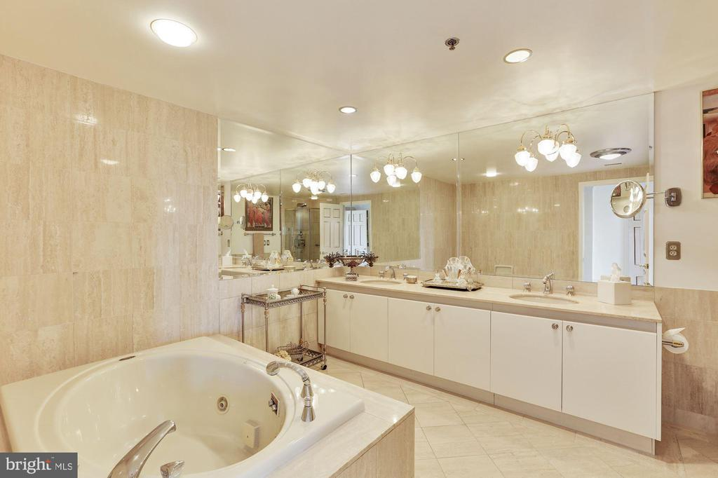 Master bathroom - 5600 WISCONSIN AVE #1308, CHEVY CHASE
