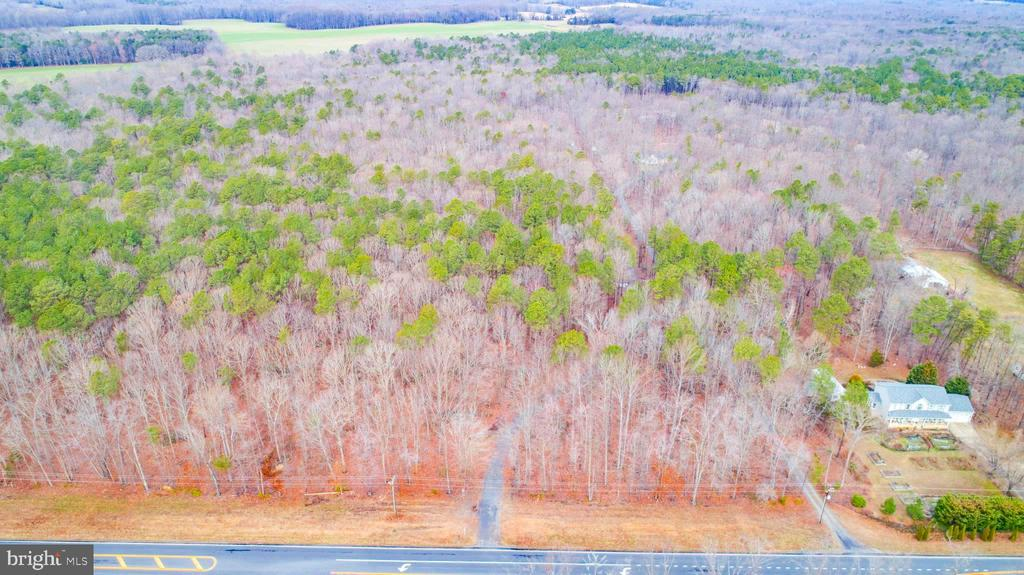 Overhead view from road / driveway entrance - 11601 ORANGE PLANK RD, SPOTSYLVANIA