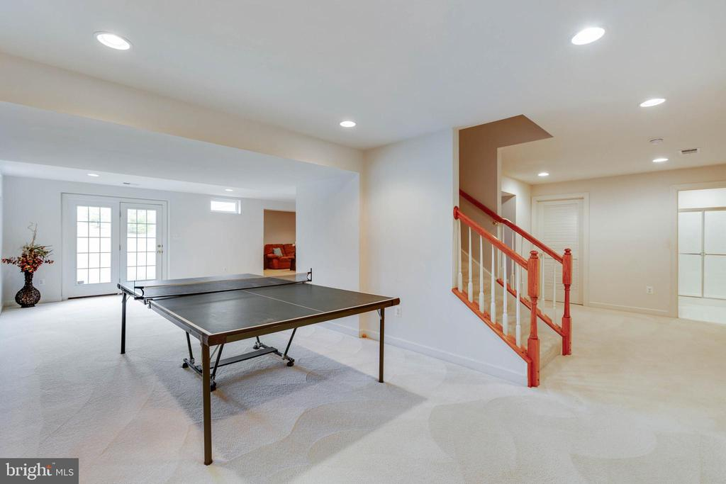 FINISHED RECREATION ROOM W/ WALK OUT - 2728 JOHN MILLS RD, ADAMSTOWN