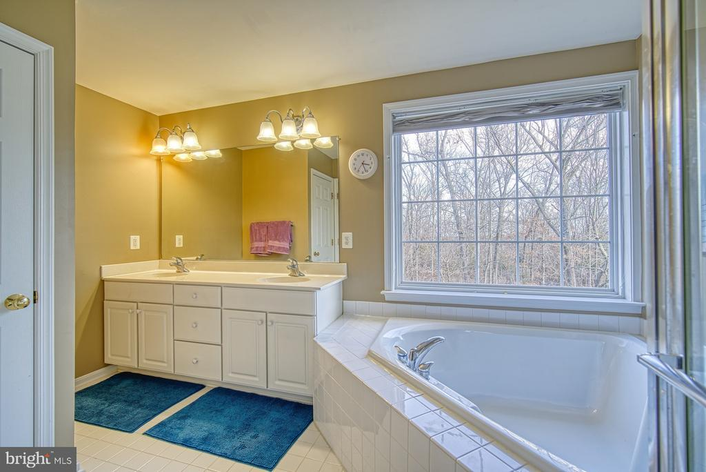 Beautiful Wooded View - 22710 DEXTER HOUSE TER, ASHBURN