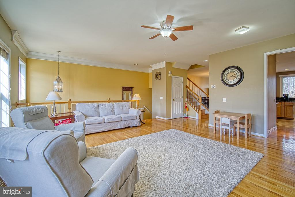 LOTS of Space for Family Fun - 22710 DEXTER HOUSE TER, ASHBURN