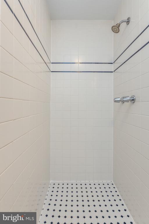 Shower in Master Bath - 4467 ELAN CT, ANNANDALE