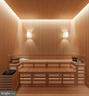 Sauna - Rendering - 1171 CHAIN BRIDGE RD, MCLEAN