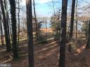 View of waterfront point from house - 11713 WAYNE LN, BUMPASS