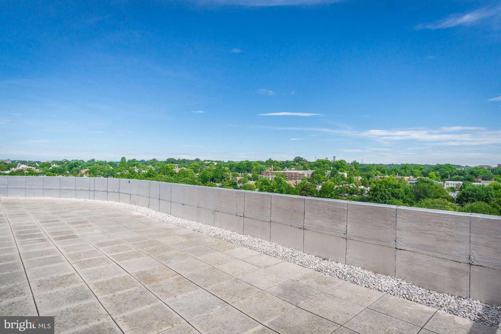 Rooftop with gorgeous views - 1275 25TH ST NW #808, WASHINGTON