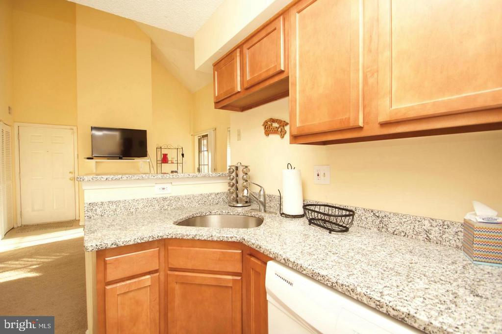 Well-Maintained Kitchen with Granite Counters - 10815 AMHERST AVE #C, SILVER SPRING