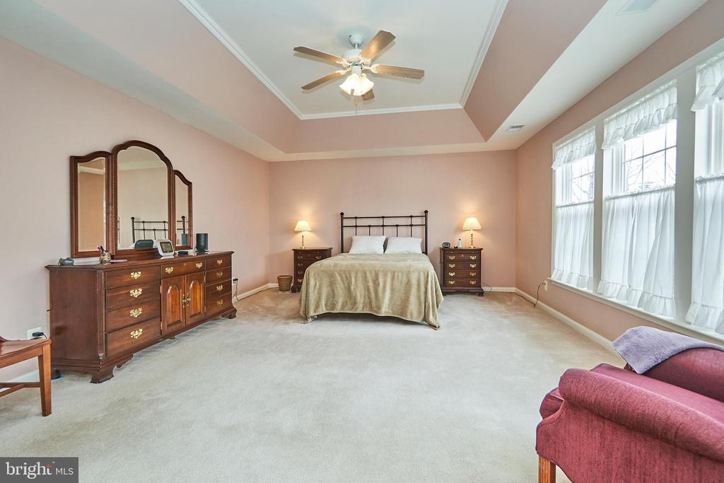Large master bedroom with tray ceiling - 5947 TUMBLE CREEK CT, HAYMARKET