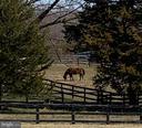 Bring the Horses :) - 6349 LOUISIANNA RD, LOCUST GROVE