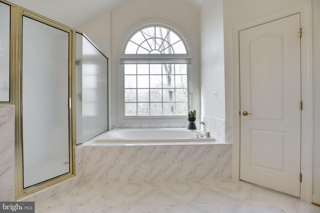 Separate Tub/Shower - 12110 WALNUT BRANCH RD, RESTON