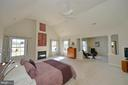 Expansive master suite with gas fireplace - 16080 GOLD CUP LN, PAEONIAN SPRINGS