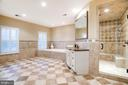 Master Bathroom Soaking Tub and Steam Shower - 9110 DARA LN, GREAT FALLS
