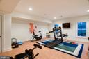 Lower Level Full Gym with Natural Light - 9110 DARA LN, GREAT FALLS