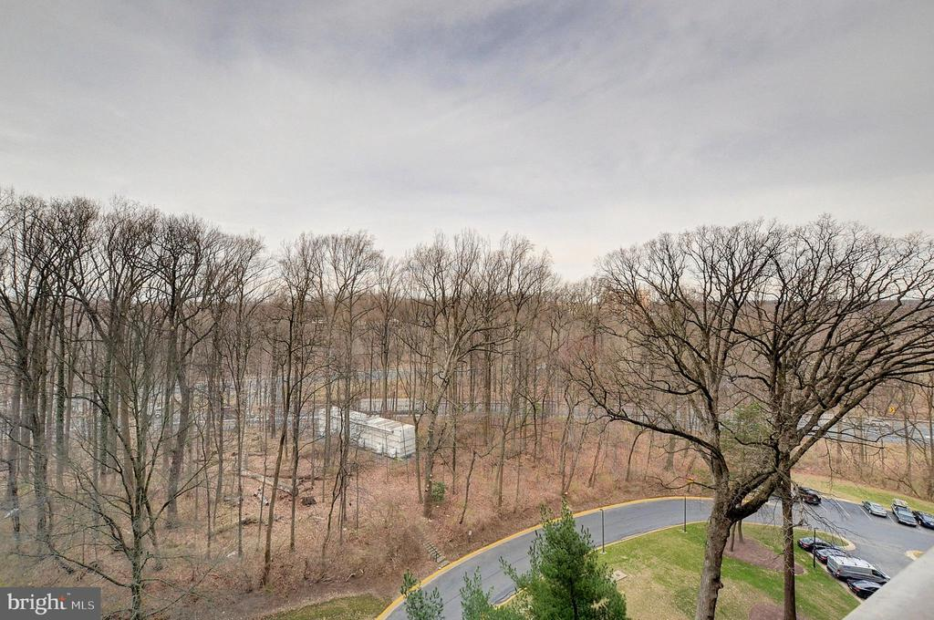 View from Apartment - 5225 POOKS HILL RD #916N, BETHESDA