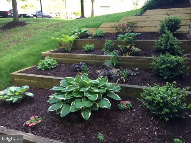 Garden beds on side of home - 1911 LOGAN MANOR DR, RESTON