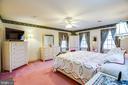 Master Bedroom - 9602 TREEMONT LN, SPOTSYLVANIA