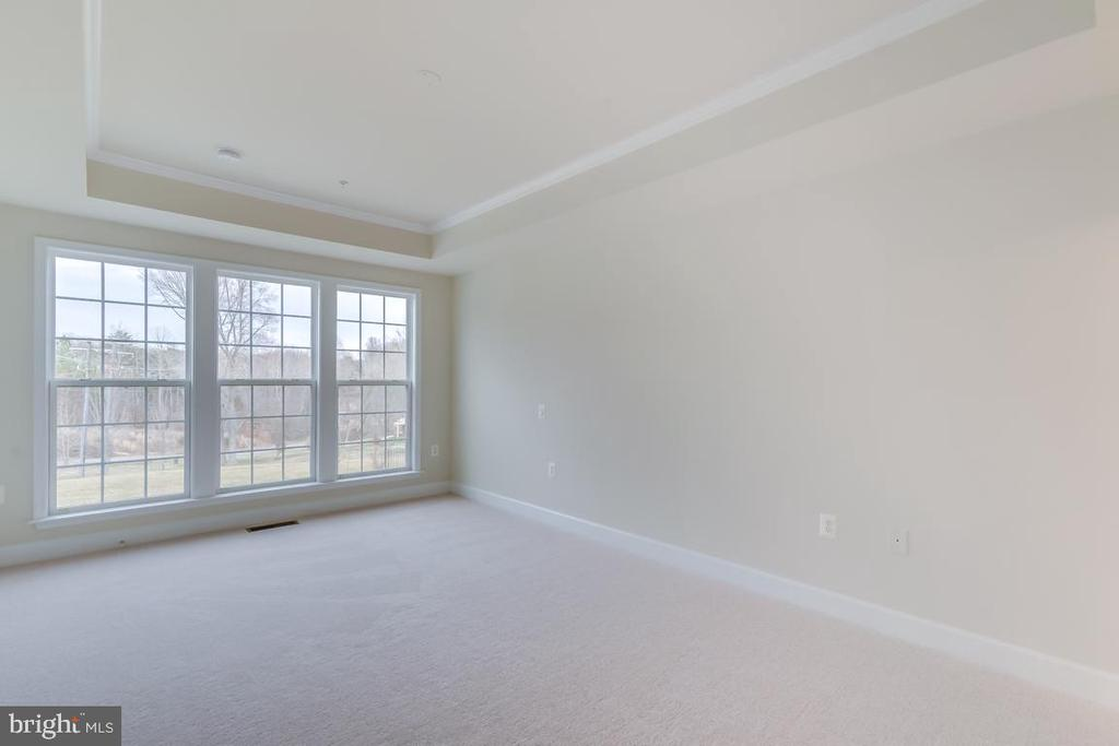 Master Bedroom with tray ceiling - 75 DENISON ST, FREDERICKSBURG