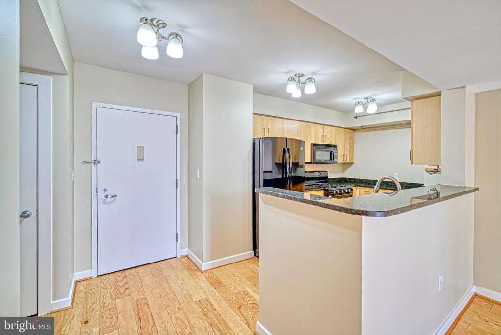 Foyer - Kitchen - 1000 NEW JERSEY AVE SE #606, WASHINGTON