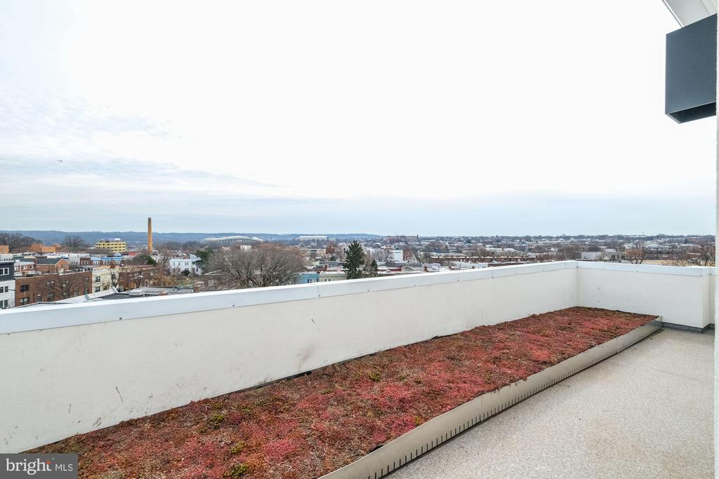 All roof decks has a green garden space - 1821 I STREET NE #11, WASHINGTON