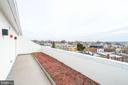 Huge expansive roof deck - 1821 I STREET NE #11, WASHINGTON