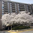 A Spring Welcome to The Encore - 1808 OLD MEADOW RD #1011, MCLEAN