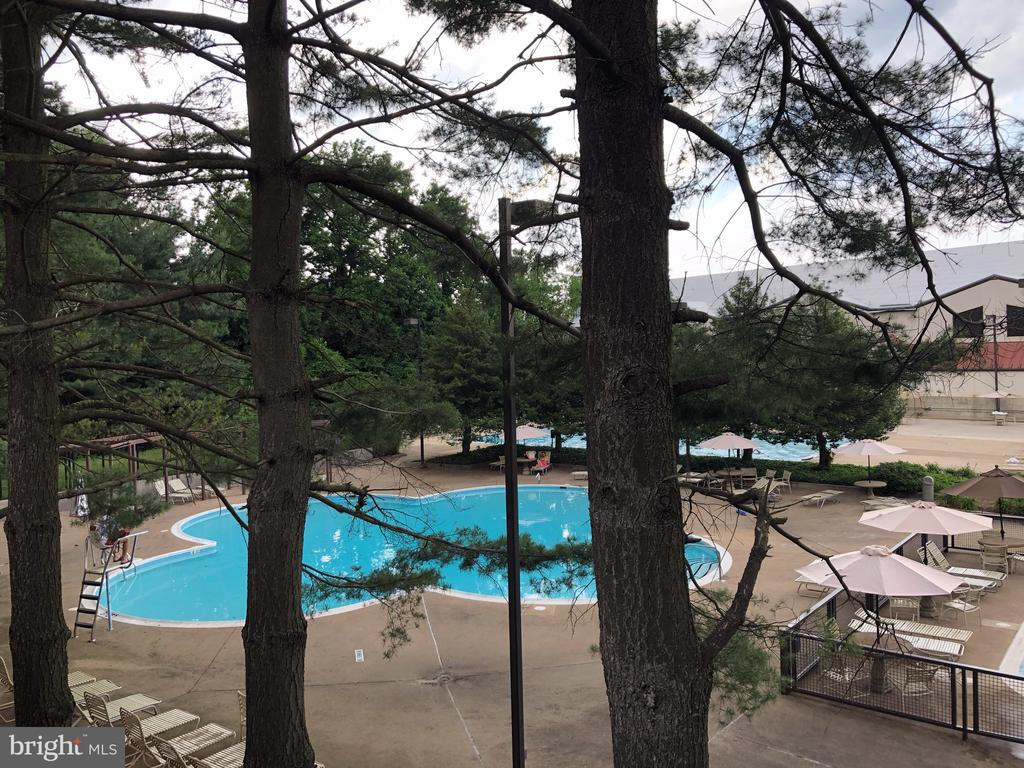 View of Pools from Parking Area - 1808 OLD MEADOW RD #1011, MCLEAN