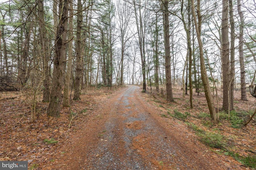 Great Driveway to this very Private Get Away!!! - 12901 JESSE SMITH RD, MOUNT AIRY