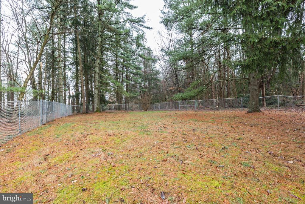 Partially Fenced Yard - 12901 JESSE SMITH RD, MOUNT AIRY