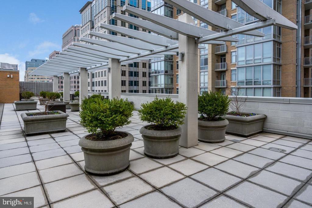 ROOF-TOP TERRACE TO ENJOY WARM SUMMER EVENINGS - 12025 NEW DOMINION PKWY #504, RESTON
