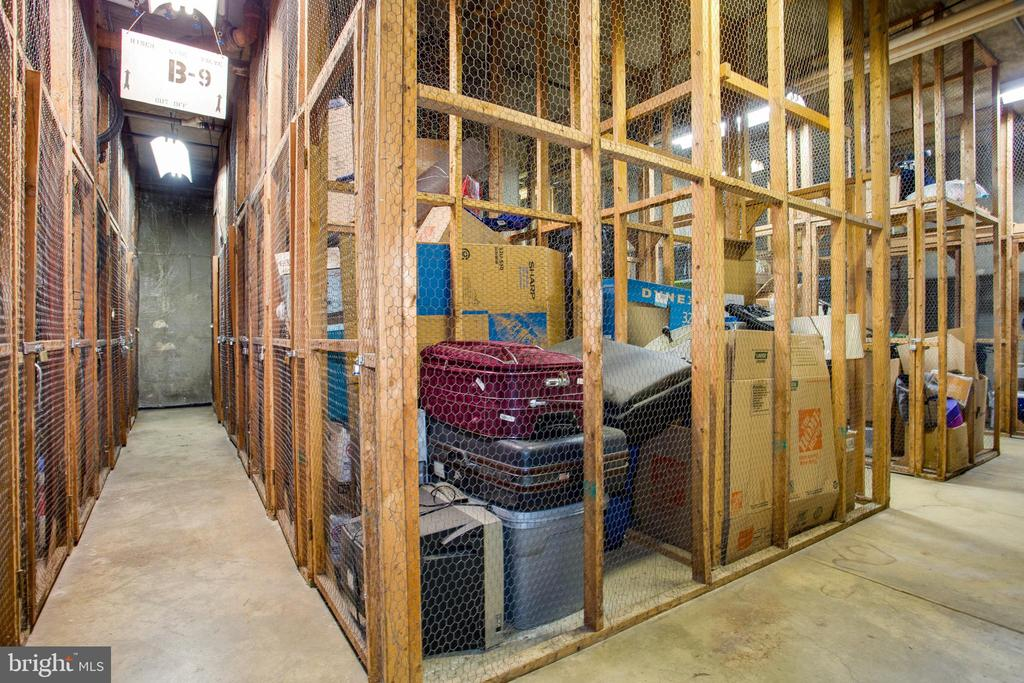 2 extra storage units convey! - 250 S REYNOLDS ST #1307, ALEXANDRIA
