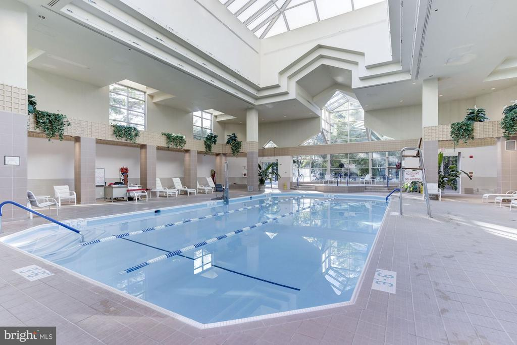Indoor pool - 5600 WISCONSIN AVE #1308, CHEVY CHASE