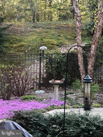 Bird lover's paradise - last spring - 10408 LAUREL RIDGE WAY, FREDERICKSBURG