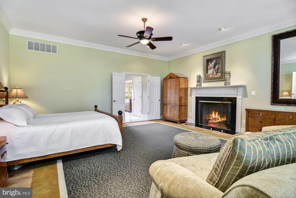 Main Level Master Bedroom with Fireplace - 1128 ASQUITH DR, ARNOLD