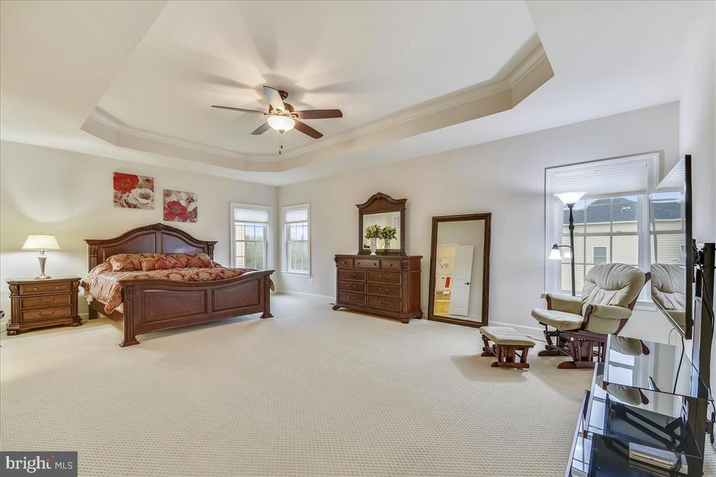 Expansive master suite - 44306 KENTMERE CT, ASHBURN
