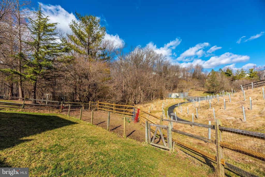 Exterior Rear/Fenced In Garden - 6024 DOUGLAS AVE, NEW MARKET