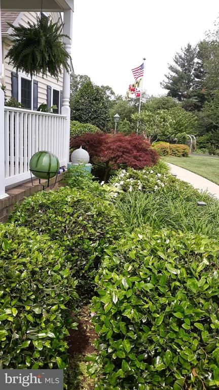 Front of porch in Spring - 2407 FLAG MARSH RD, MOUNT AIRY