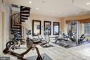 Exercise Room - 896 ALVERMAR RIDGE DR, MCLEAN