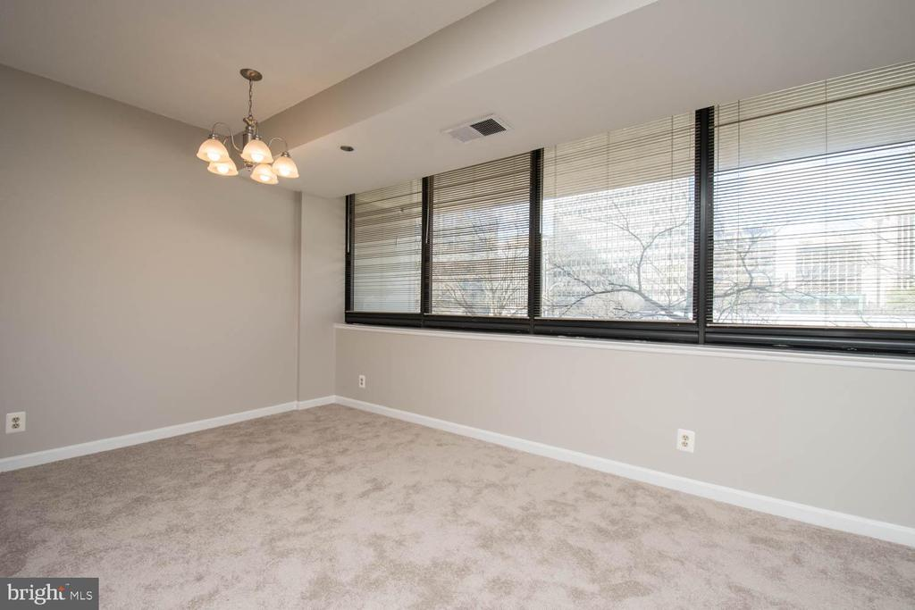 Prior pictures are virtually stages.....originals. - 1805 CRYSTAL DR #205 S, ARLINGTON