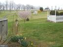 Spring flowers - 16080 GOLD CUP LN, PAEONIAN SPRINGS