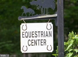 Equestrian Center - 117 GREEN ST, LOCUST GROVE