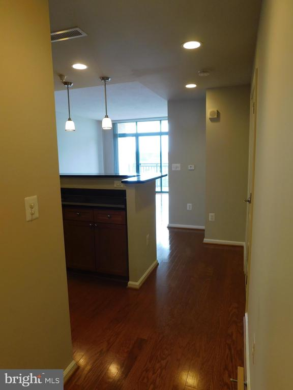 View from Hallway into unit - 11700 OLD GEORGETOWN RD #314, NORTH BETHESDA