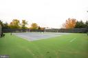 Tennis Courts - 13533 RYTON RIDGE LN, GAINESVILLE