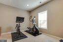 Basement Exercise Room - 18751 PIER TRAIL DR, TRIANGLE