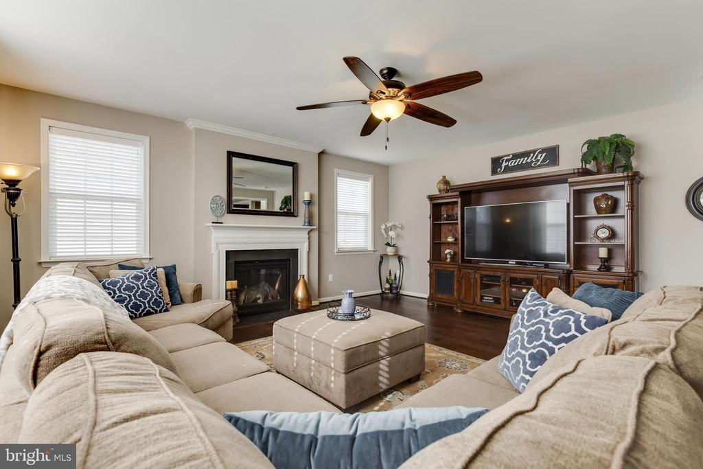 Family Room - 18751 PIER TRAIL DR, TRIANGLE