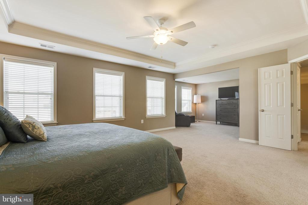 Master Suite with Tray Ceiling - 18751 PIER TRAIL DR, TRIANGLE