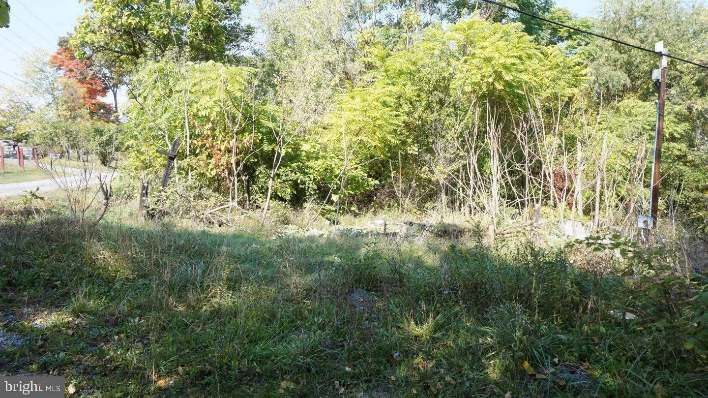 Additional photo for property listing at 106 DENT HILL Lane Berkeley Springs, Tây Virginia 25411 Hoa Kỳ